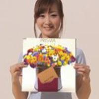 Torii Shunsuke